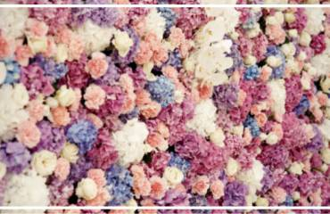 Dirbtinių gėlių siena